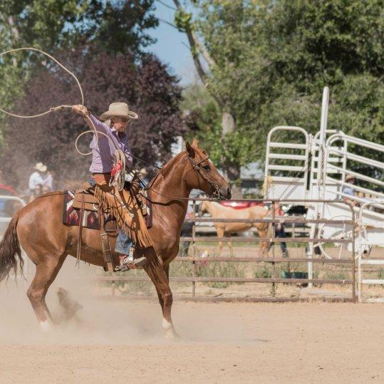 Lassen County Fair Horse Show 2016